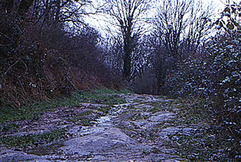 pierre-perthus-road-4-copy1