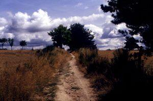 Pilgrimage Road at Chanaleilles