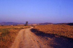 Pilgrimage Road at Los Arcos